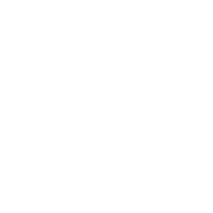 Icon Luftfahrt